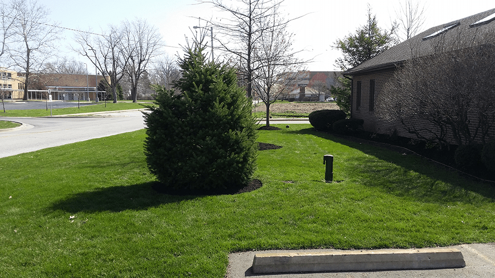 fresh clean lawn care by van dame outdoor maintenance lafayette indiana